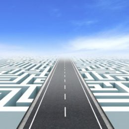 Avoid the maze for success in business