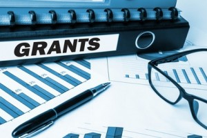 Government Grant for business